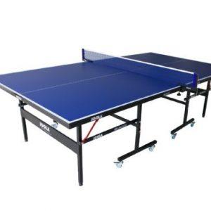 פינג פונג 300x300 - שולחן פינג פונג אולימפי